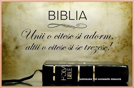 biblia imi