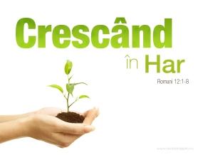 crescaninHar_1280x1024